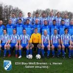 1.Herren Saison 2014/15
